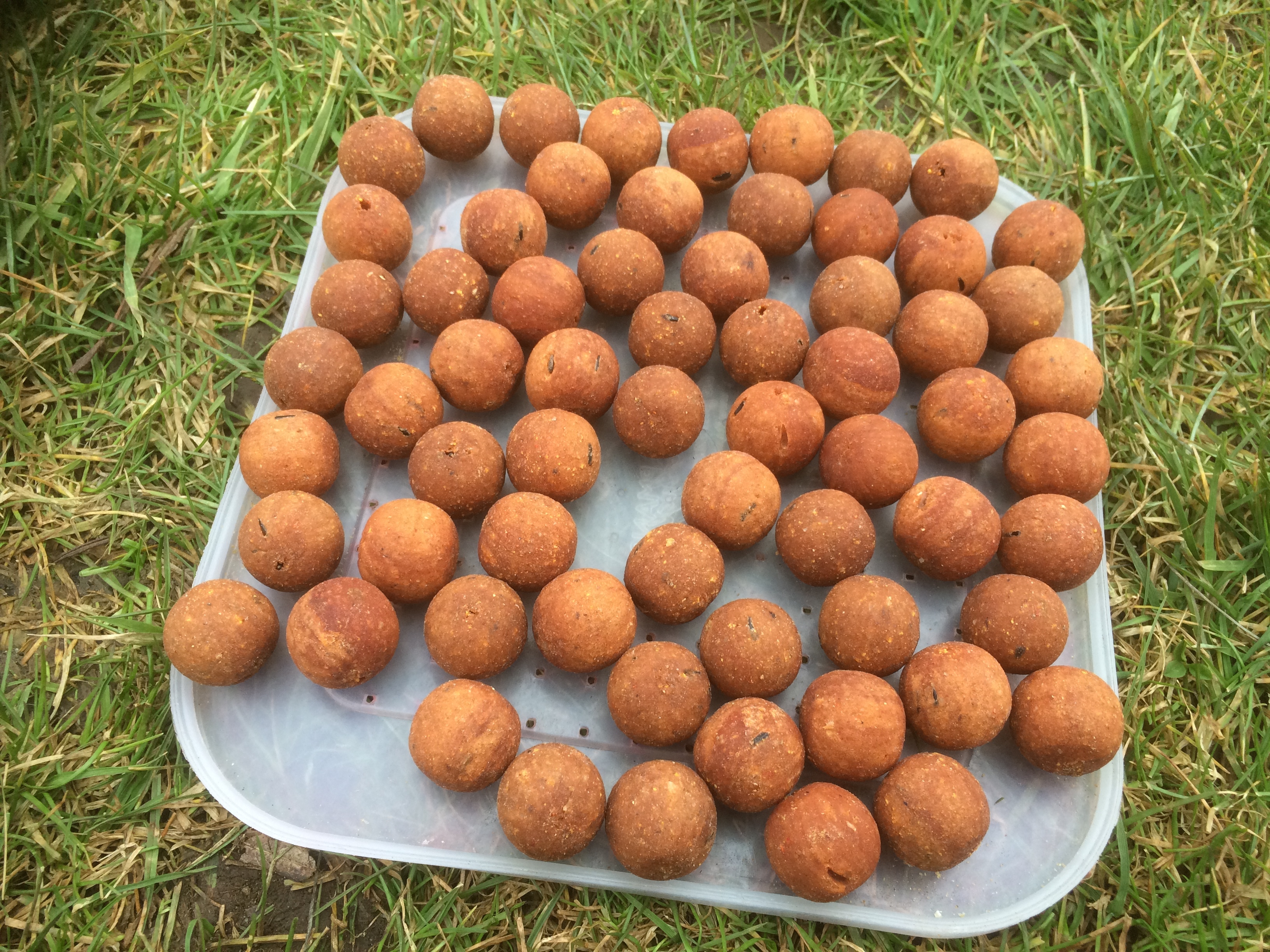 CCMoore Test Rolled Baits #bargain #boilies
